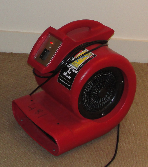 Carpet dryer, carpet drying